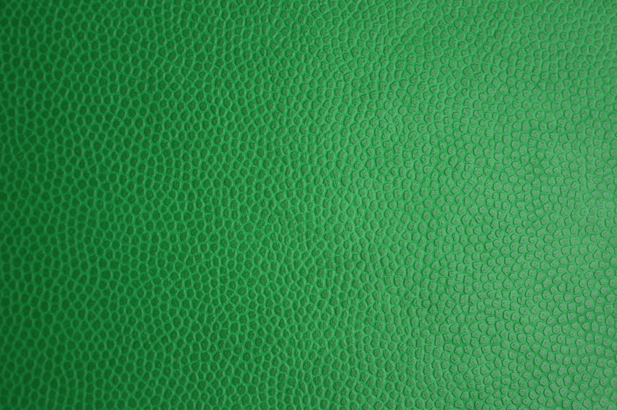 green-skin-2190694